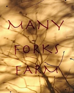 forks shadow pick