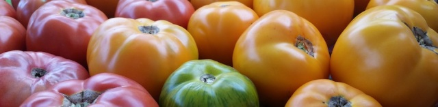 tomatoes-cropped
