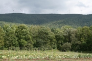 farm september 001